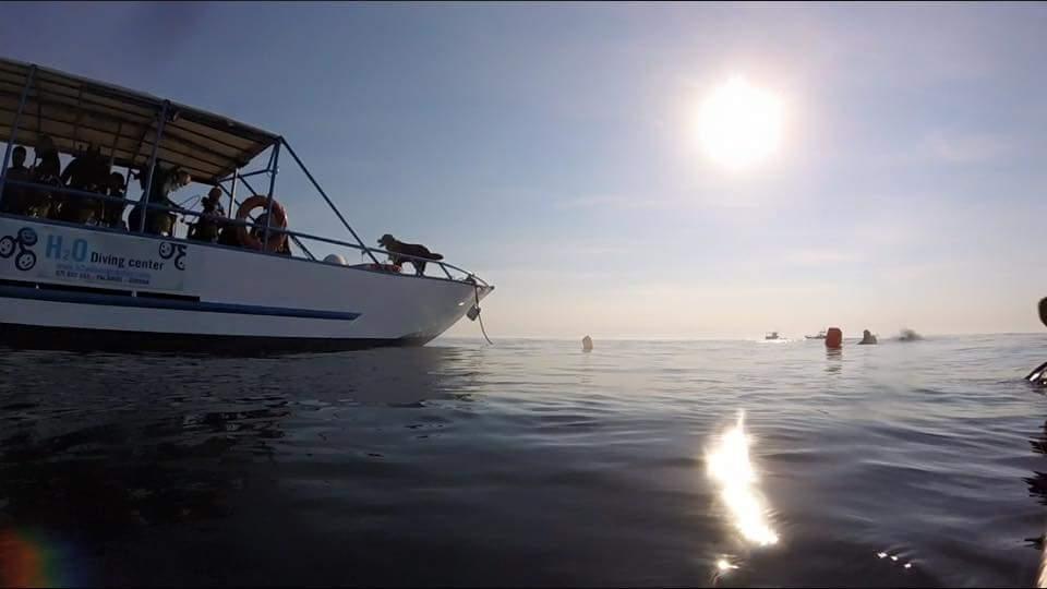 Salidas_de_barco