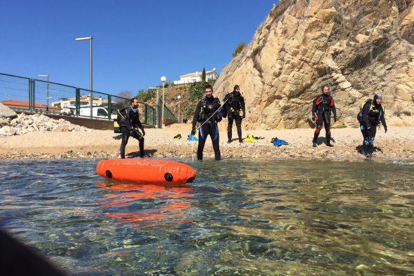 rescue:diver