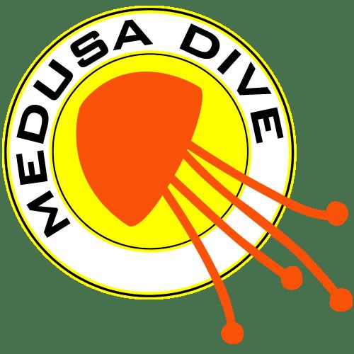 logo medusadive