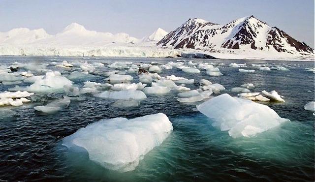 Salvemos_Antartico