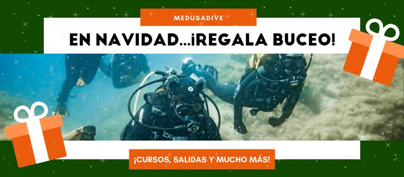 regala_buceo_19