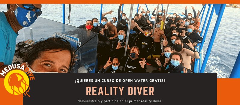 reality_diver