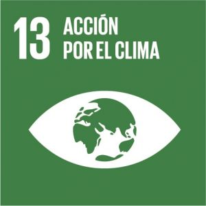 accion_clima