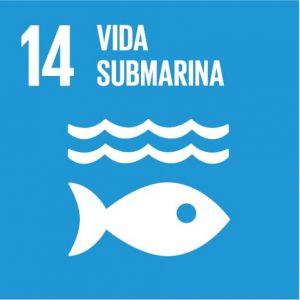 vida_submarina