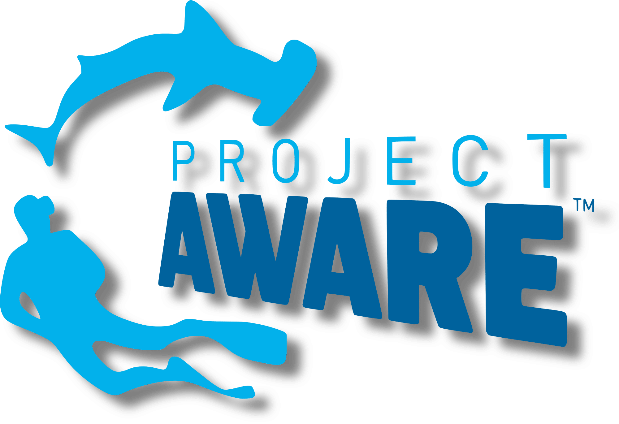 project_aware