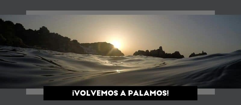 volvemos_palamos