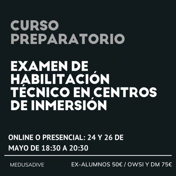 centros_inmersion